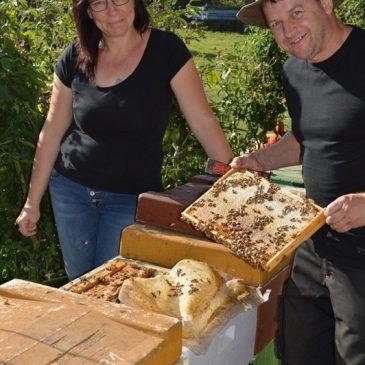 Imkerei in Stadt und Land – Bauern und ihre Bienenzucht