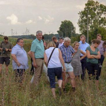Feldtag zur Biodiversität auf Bördeäckern
