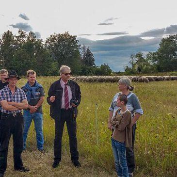 Wirtschaftlichkeit der Schafhaltung auf der Kippe